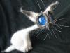 Космические кошки Светланы Перцевой